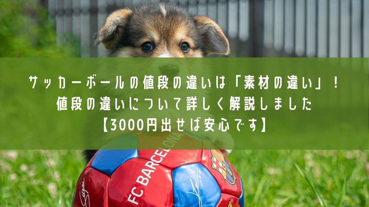 サッカーボール_値段の違いのアイキャッチ画像